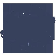Servicio 24h plagas