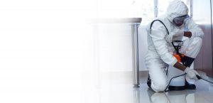 Empresa control de plagas Unit Control