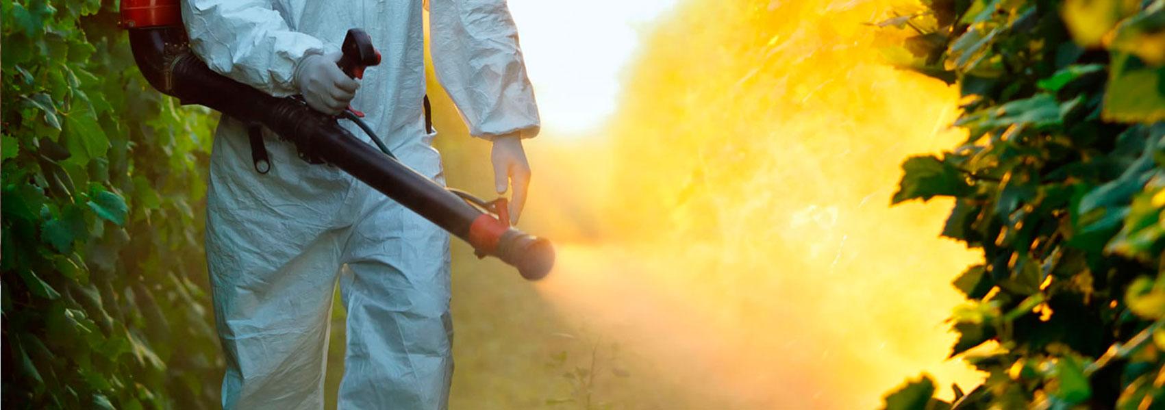 Empresa control de plagas en Madrid