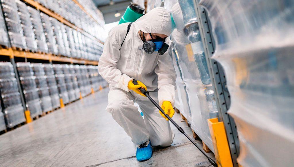 Control de plagas 24 horas en Madrid