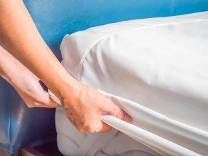 Acerca de la eliminiación de las chinches de cama